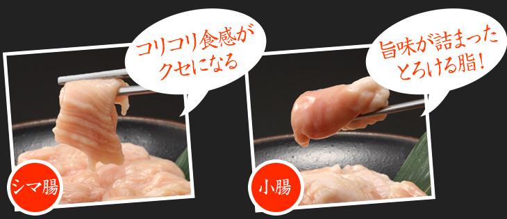 コリコリ食感がクセになるシマ腸 旨味が詰まったとろける脂!小腸